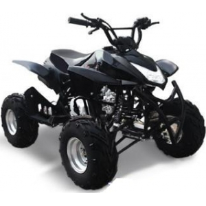 Omaks ATV SP303