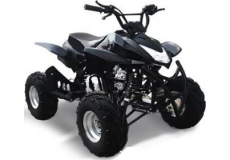 Квадроцикл Omaks ATV SP303
